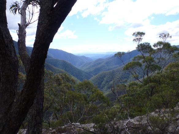Looking down Kanangra Gorge